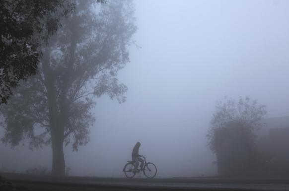 जम्मू में हर तरफ कोहरे की चादर लिपटी हुई है, ऐसे में एक साइकिल सवार।