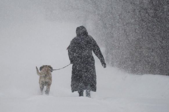 मॉनट्रियल में बर्फबारी के बीच एक महिला अपने डॉगी के साथ।