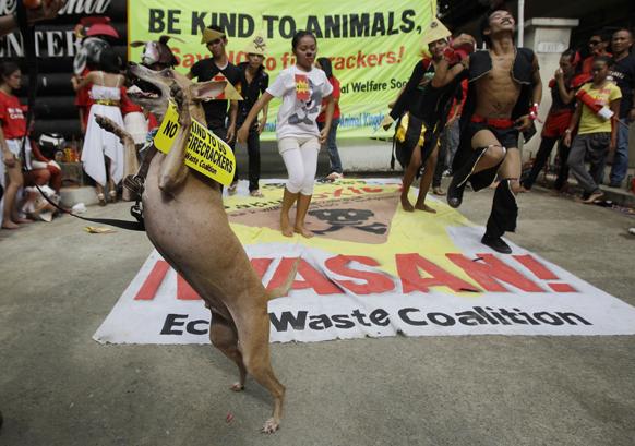फिलीपींस के मनीला में एक अभियान के दौरान 'गंगनम स्टाइल' नृत्य करते कलाकार। उनके इस कार्यक्रम में एक डॉग भी शरीक होते हुए।