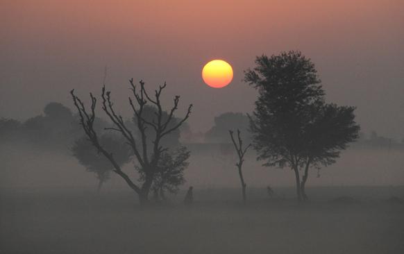 राजस्थान के अजमेर में उगते सूरज के बीच फैले कोहरे से होकर गुजरता एक व्यक्ति।