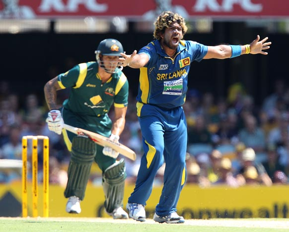 ब्रिसबेन वनडे में ऑस्ट्रेलियाई टीम 74 रनों की पारी पर आलआउट हो गई।