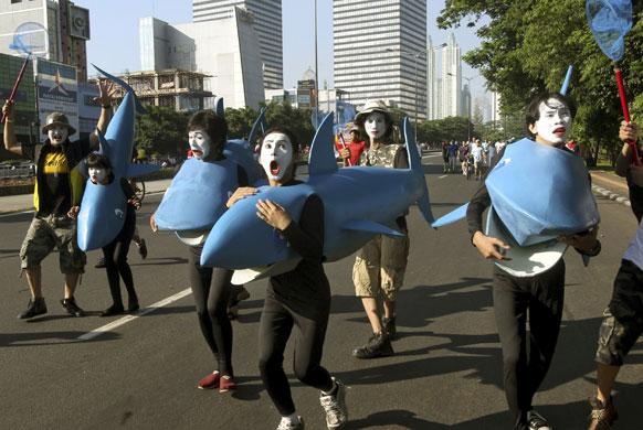 जाकार्ता में वर्ल्ड वाइल्डलाइफ फंड रैली के दौरान शार्क के पहनावे में कार्यकर्ता।