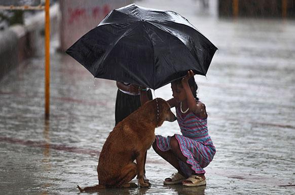 मुंबई में मॉनसूनी बारिश से बचने के लिए छाते से कुत्ते को बचाती एक लड़की।