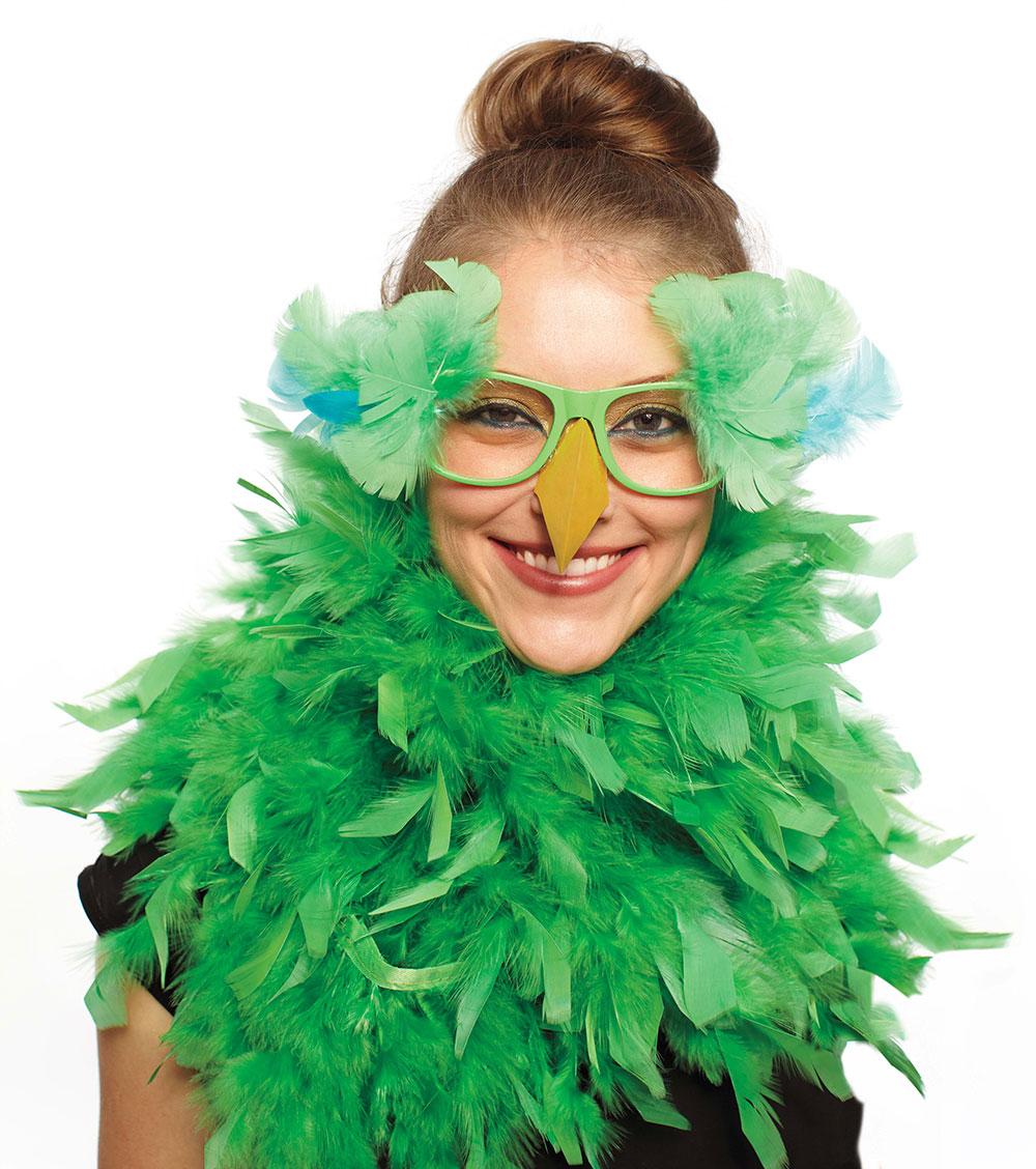 मार्था स्टीवर्ट हेलोवीन विशेष अंक के सौजन्य से पेश यह तस्वीर एक तोता रूपी पोशाक को प्रदर्शित करती हुई।