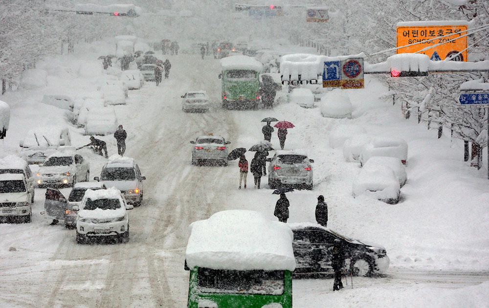 साउथ कोरिया के गंगनुंग में भारी बर्फबारी।
