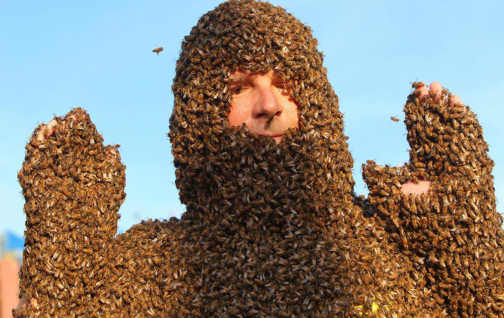 कनाडा के ओंटारियो में एक वार्षिक प्रतियोगिता में अपनी मधुमक्खी दाढ़ी को दिखाता एक प्रतियोगी।