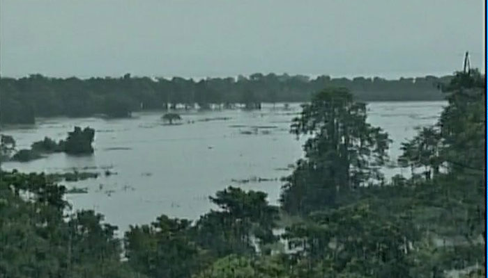 बारिश से नदियां उफान पर, असम में बाढ़ से अब तक 59 की मौत, काजीरंगा पार्क आधे से ज़्यादा डूबा