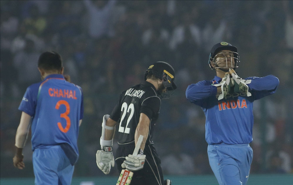 India`s MS Dhoni celebrates fall of Kane Williamson`s wicket during the third ODI match between India and New Zealand at Green Park Stadium in Kanpur.