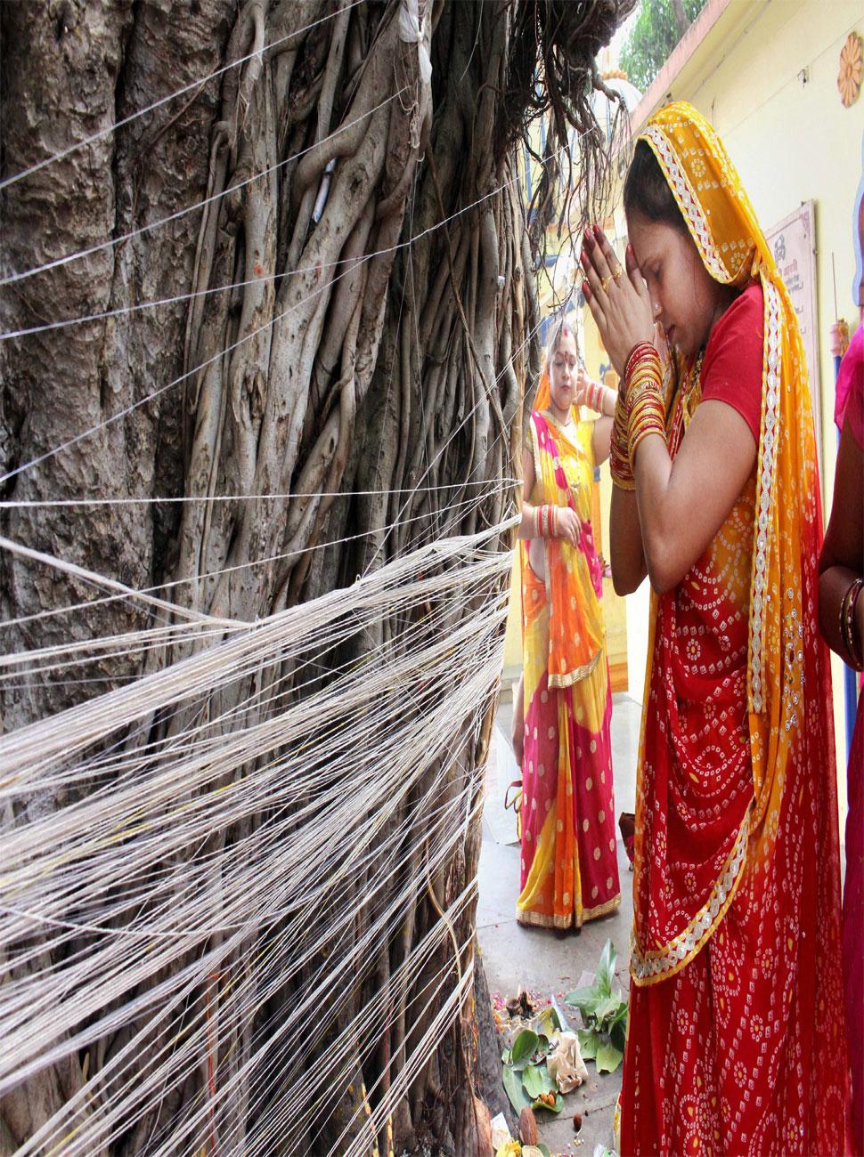 rituals near a Banyan tree during Vat Savitri Puja