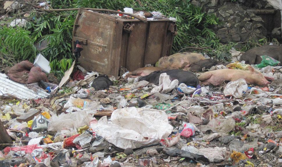 judge sit near garbage