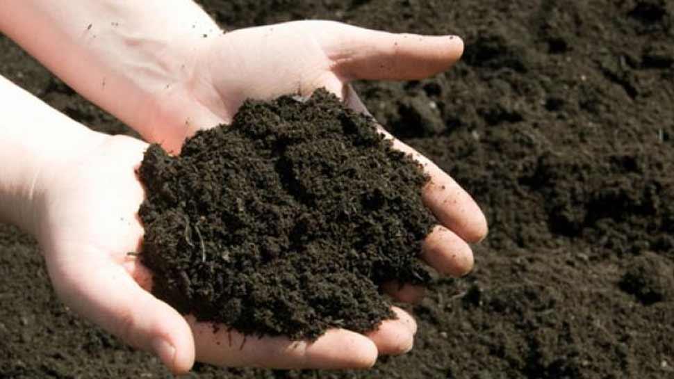 जख्मों को भरने में मदद कर सकती है मिट्टी, रिपोर्ट में हुआ खुलासा