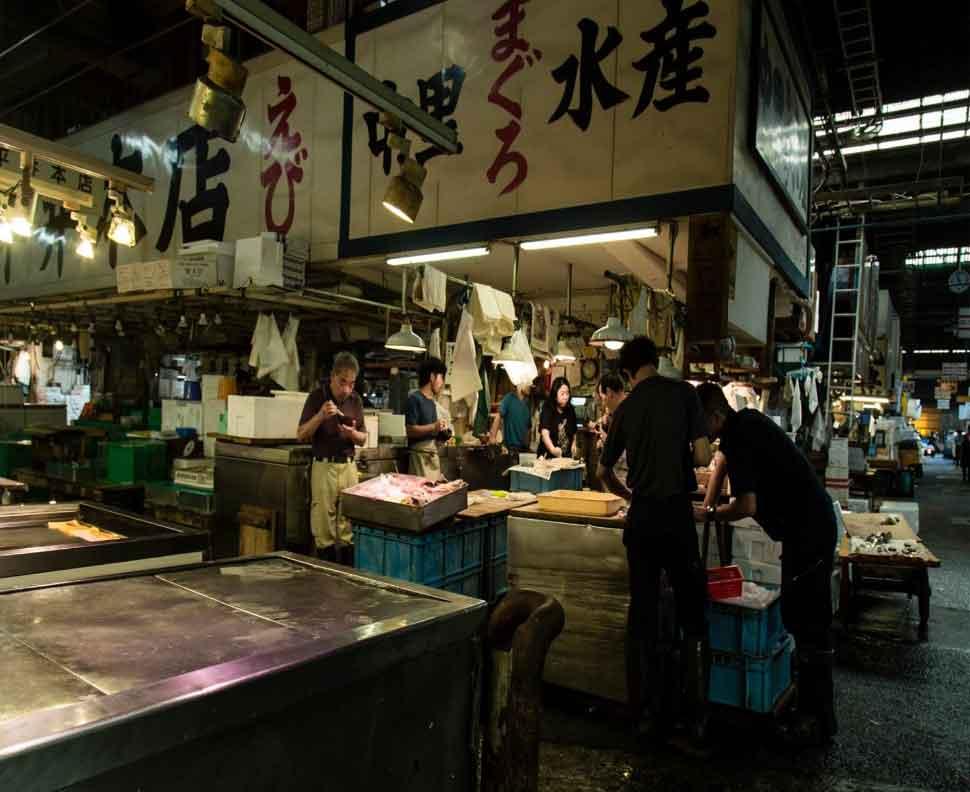 Japan will send war against rats-2