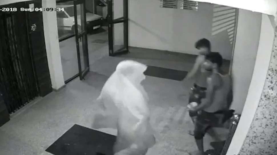 घर में चोरी करने घुसे तो CCTV देख करने लगे ये काम, VIDEO वायरल