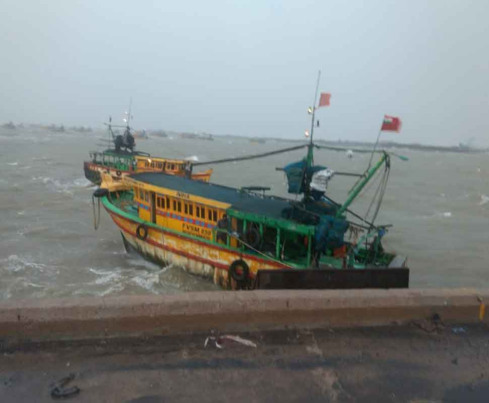 Administrative officials cut down on shores