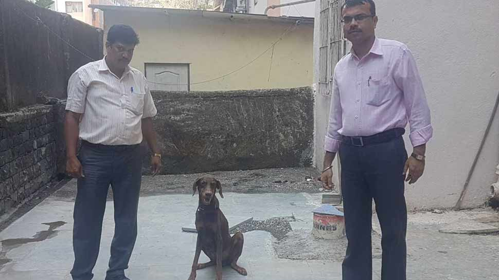 Dog Squad of Mumbai Police hina will retire today from her duties