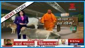 गाय की सेवा क्यों करते हैं योगी आदित्यनाथ?
