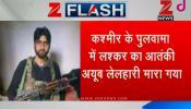 कश्मीर के पुलवामा में मोस्ट वांटेड आतंकवादी अयूब लेलहारी मारा गया