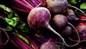 Beetroot is beneficial to Avoid Alzheimer