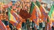 बीजेपी ने NCP से छीना धुले नगर निगम, 50 सीटों पर हासिल की एकतरफा जीत