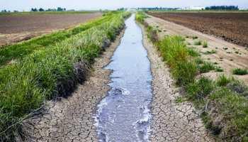 राजस्थान में भू-जल स्तर गिरा, पीने के पानी का प्रबंधन बड़ी चुनौती: कैग