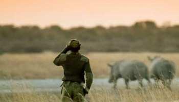 जोधपुर: वन्य जीवों की सुरक्षा देने वाले ए ग्रेड रेंजर्स के 400 पद खाली, सरकार बेफिक्र