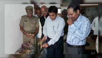यूपी: कछुए की करोड़ों की खाल के साथ जा रहा था कोलकाता, पुलिस ने दबोचा
