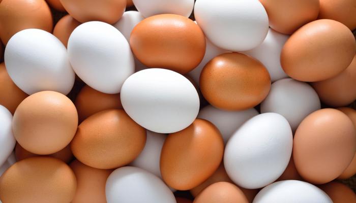 उबला अंडा फिर से बनेगा कच्चा, जानिए कैसे?