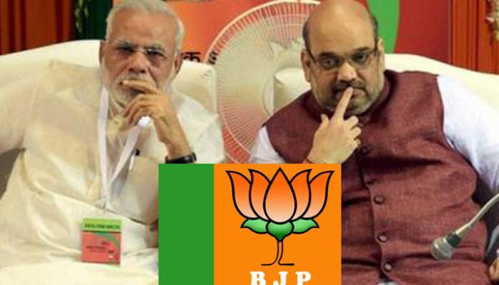 जानिये, वो प्रमुख कारण जिसके चलते BJP को बिहार चुनाव में मिली करारी हार