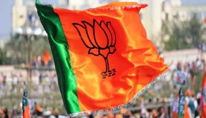 बिहार चुनाव में हार के बाद बीजेपी, एनडीए के अंदर उठापटक