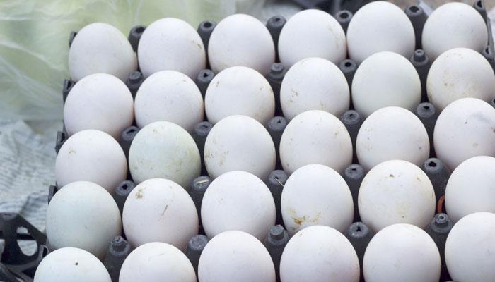 रोज खाएं एक अंडा, नहीं होगा हृदय रोग