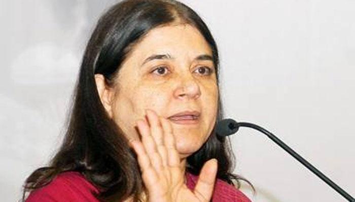 Image result for मेनका गांधी : स्त्रियों की सुरक्षा के लिए कुछ व कदम उठाने की आवश्यकता