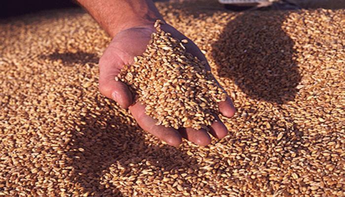 33 राज्यों-केन्द्र शासित प्रदेशों में खाद्य कानून लागू किया गया: सरकार