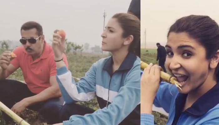 खेत में टमाटर तोड़कर खाते और गन्ना चूसते नजर आए सलमान और अनुष्का- देखें Video