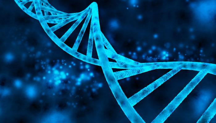 वैज्ञानिकों ने सुलझाया एक्स-फाइल का डीएनए रहस्य