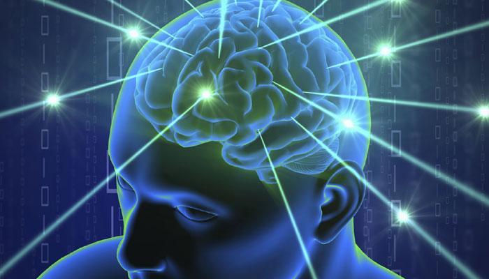 मस्तिष्क कुछ इस तरह से लेता है जोखिम भरा फैसला
