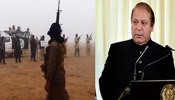 'दुनिया का ध्यान आतंकवाद से निपटने पर, पाकिस्तान का कश्मीर मसले पर'