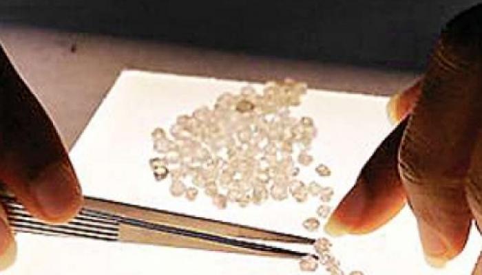 मध्यप्रदेश में नीलाम हुआ देश का पहला डायमंड खनिज ब्लॉक