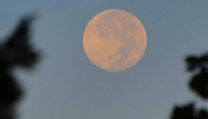 आज दिखेगा 'सुपर मून' , 69 साल में धरती के सबसे करीब होगा चांद