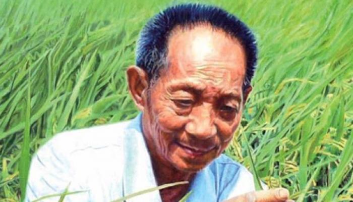 'हाइब्रिड चावल' के जनक युआन लांगपिंग ने बनाया नया विश्व रिकार्ड