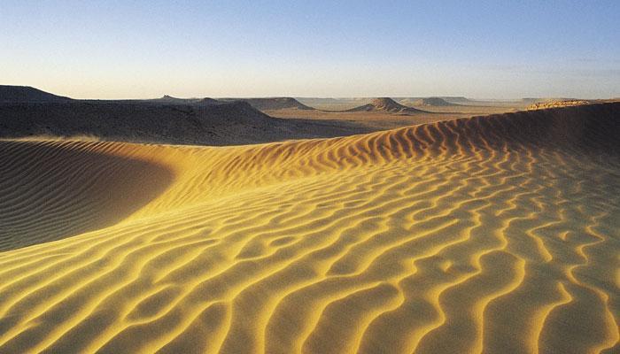 करीब 6,000 साल पहले हरा-भरा था रेगिस्तान सहारा : स्टडी