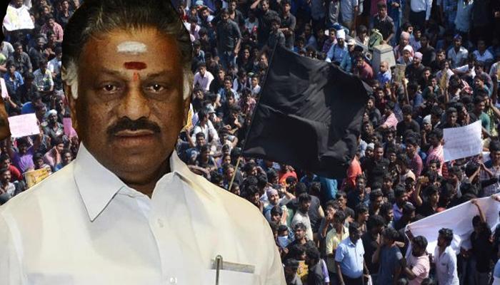 समूचे तमिलनाडु में फैल रहा जल्लीकट्टू आंदोलन को मिला शशिकला का भी साथ, PM मोदी से आज मिलेंगे पन्नीरसेलवम