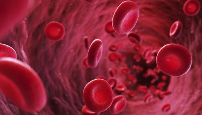 हृदय में खून का थक्का जमने के खतरे से निपटेगा विशिष्ट मॉडल