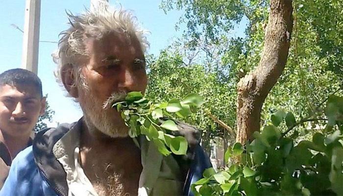 OMG VIDEO : 25 सालों से पत्ते- टहनियां खाकर जिंदगी गुजार रहा ये पाकिस्तानी शख्स
