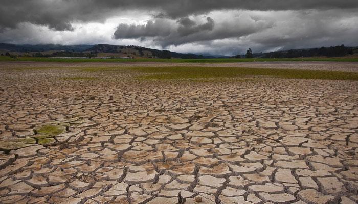 बीफ बैन से घट सकती है ग्लोबल वार्मिंग, गोमांस की बजाय फलियां खाने से कम होगा जलवायु परिवर्तन का खतरा!