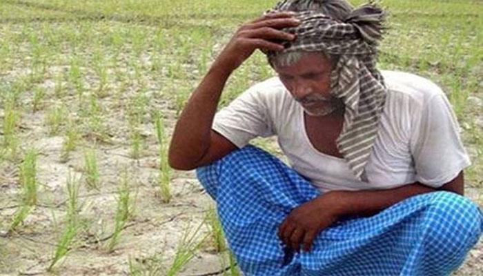 मध्यप्रदेशः पिछले 13 साल में 15,129 किसानों एवं खेतीहर मजदूरों ने की आत्महत्या
