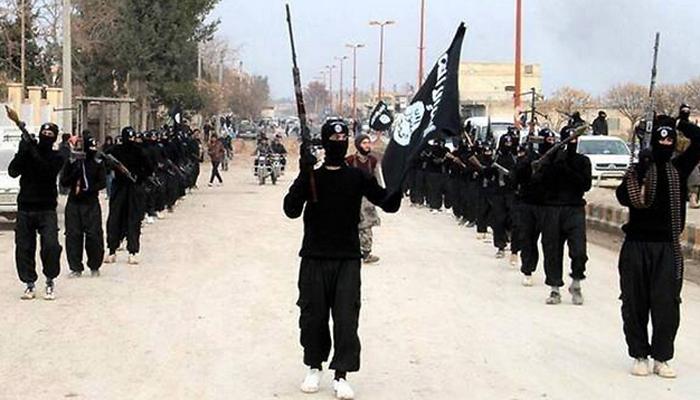 ट्रंप के बाद मैटिस ने कहा, इस्लामिक स्टेट संगठन के खिलाफ लड़ाई जीत रहा है अमेरिका