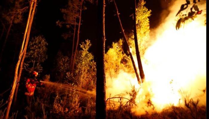 दक्षिण फ्रांस के जंगलों में आग, दस हजार लोग रेस्क्यू