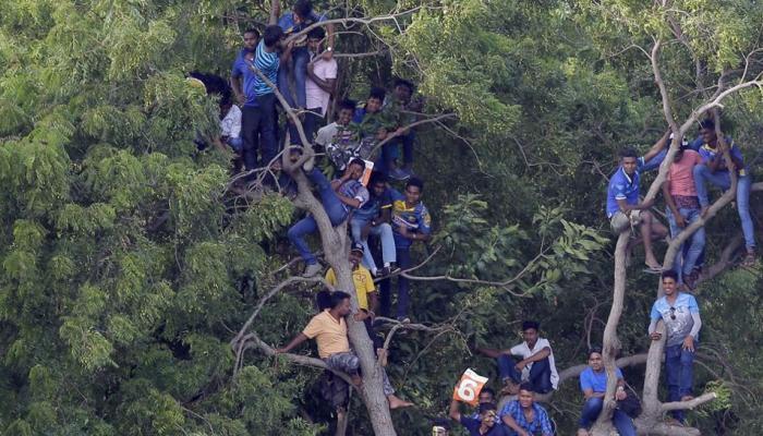 श्रीलंका की करारी हार पर बरसे फैंस, बस रोककर जताई नाराजगी