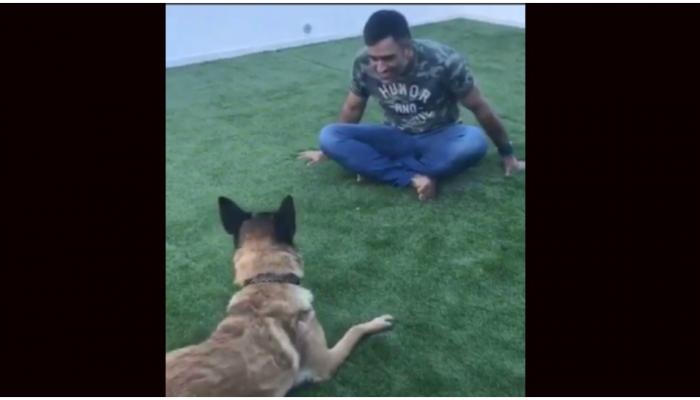 साक्षी ने VIDEO शेयर कर बताया माही की 'परछाई' है उनका 'सैम'