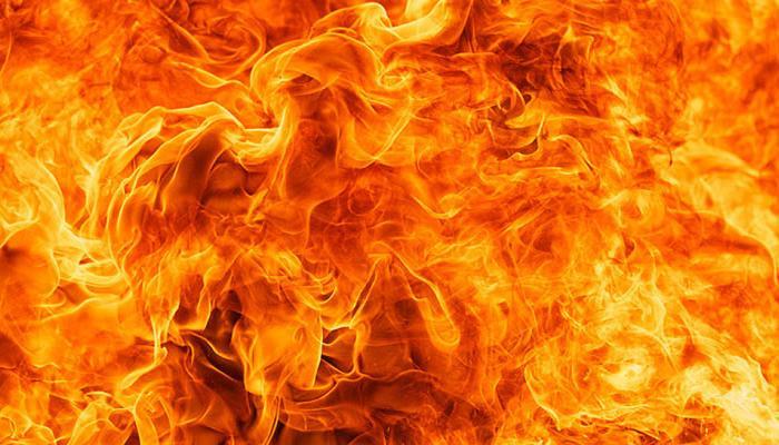 पुर्तगाल के जंगल में लगी आग, 45 की मौत